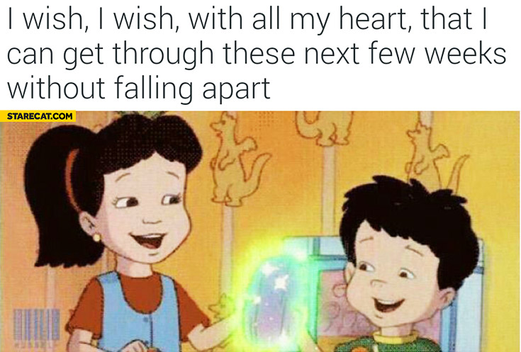 I wish with all my heart that I can get through these next few weeks without falling apart