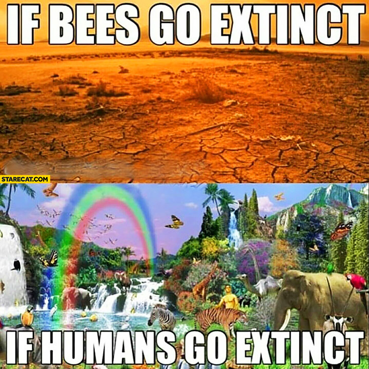 If bees go extinct: earth is dead, if humans go extinct: earth flourishes