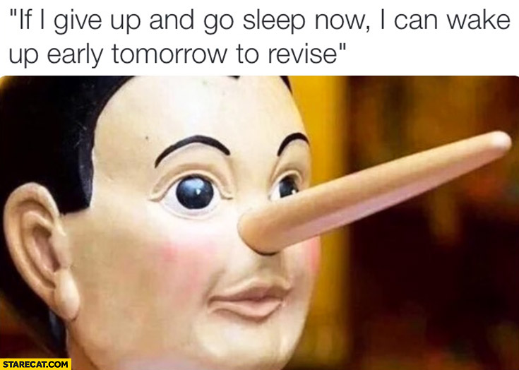 If I give up and go sleep now I can wake up early tomorrow to revise Pinocchio nose