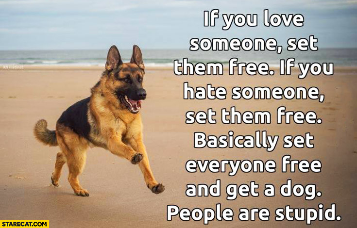 If you love someone set them free if you hate someone set them free basically set everyone free and get a dog people are stupid