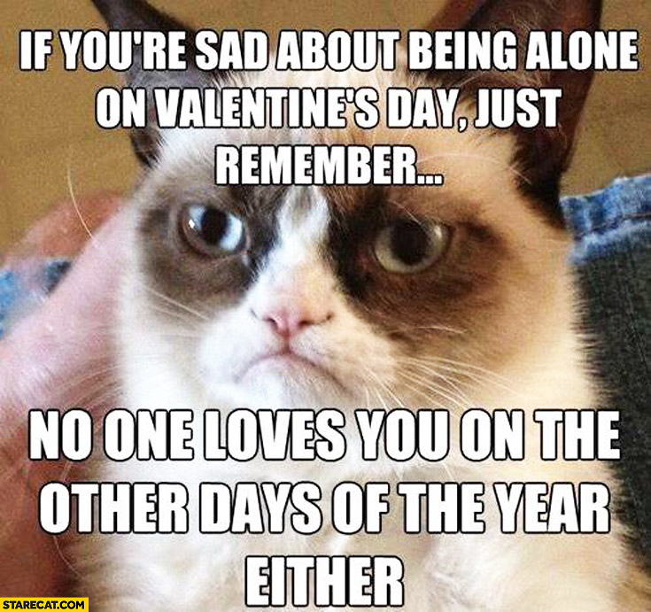 If you're sad about being alone on valentines day remember no one loves you on other days of the year either Grumpy