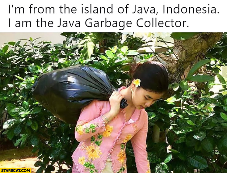 I'm from the Island of Java, Indonesia, I am the Java garbage collector