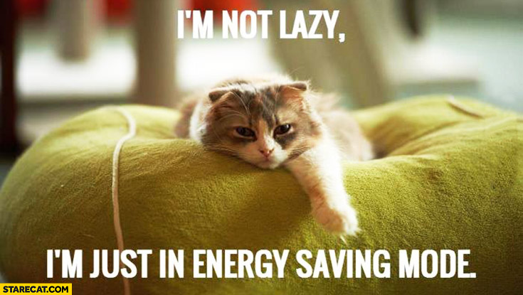I'm not lazy, I'm just in energy saving mode sleepy cat