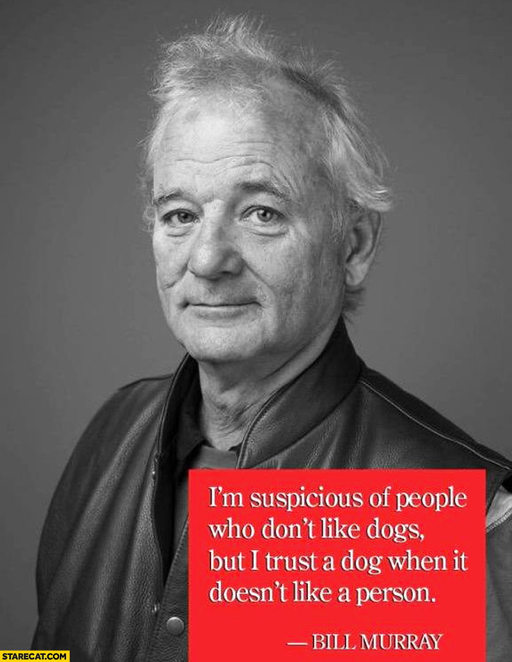 Cats And Dogs Bill Murray Quote