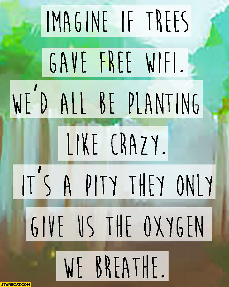 Imagine if trees gave free wifi we'd all be planting like crazy it's a pity they only give us the oxygen we breathe