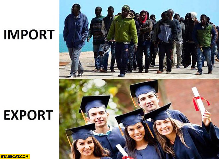 Import immigrants export young educated