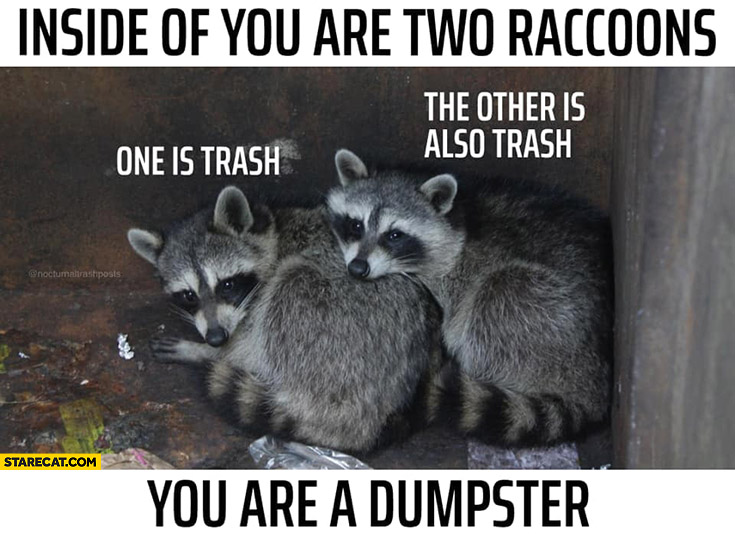 Inside of you are two raccoons: one is trash, the other is also trash, you are a dumpster