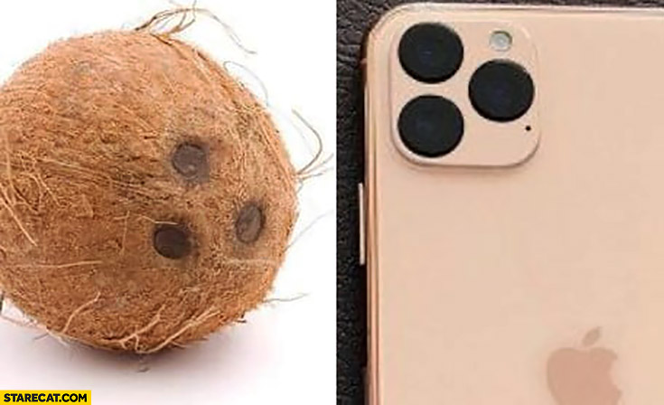 iPhone 11 camera looks like a coconut