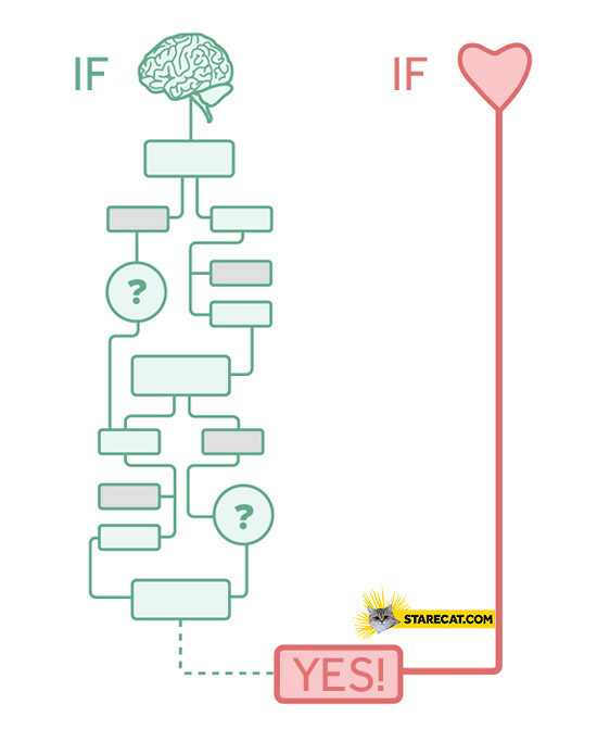 Is it love? brain heart graph