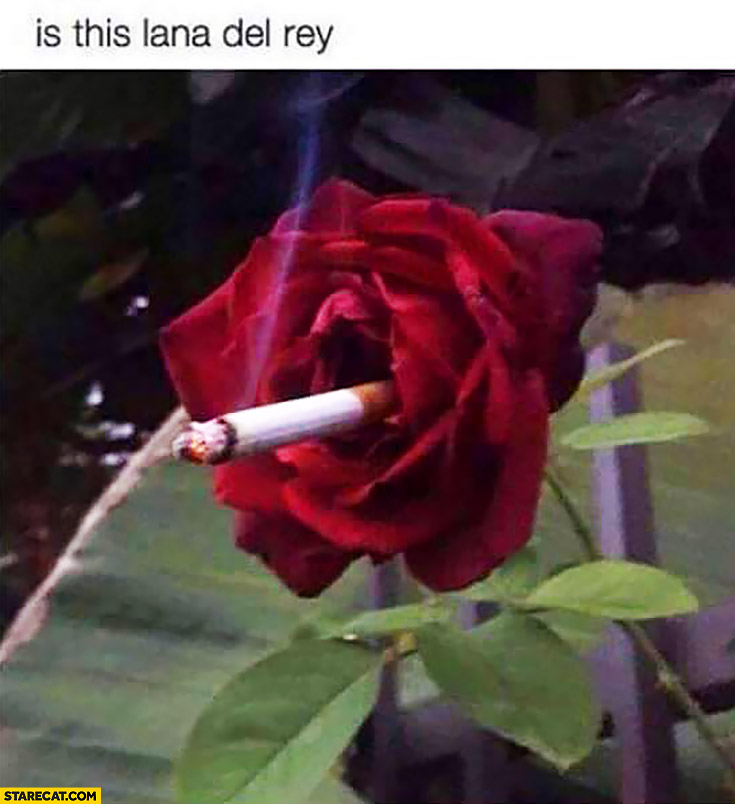 Is this Lana Del Rey? Rose smoking a cigarette