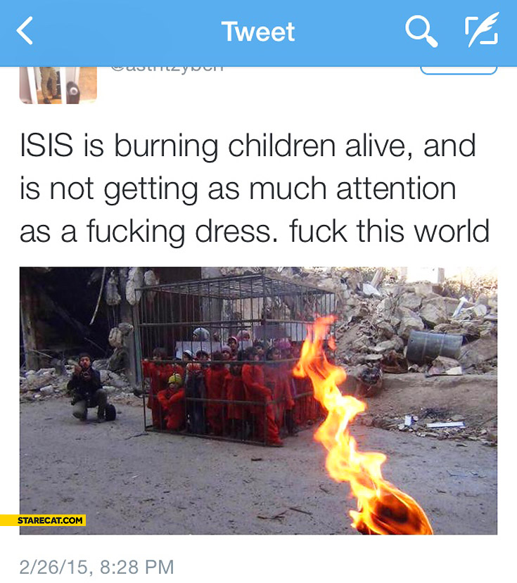 ISIS is burning children alive and is not getting as much attention as a fcking dress screw this world