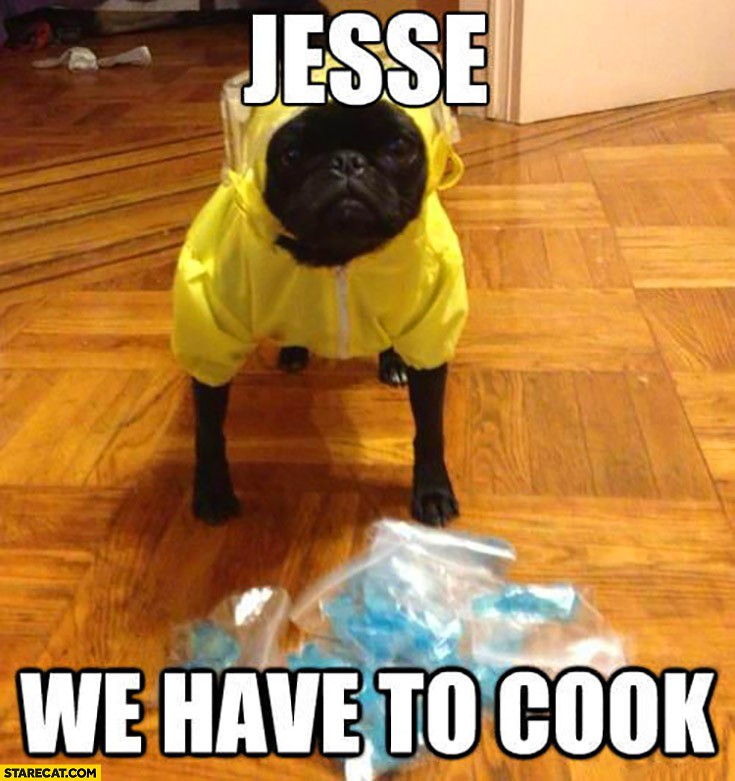 Jesse we have to cook dog Breaking Bad