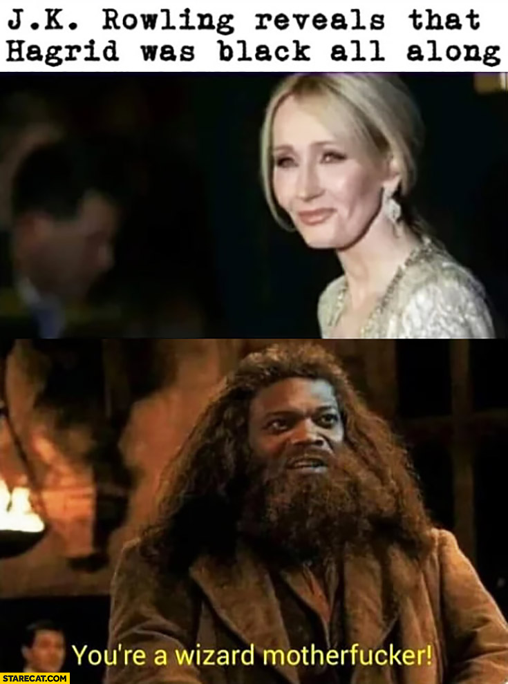 JK Rowling reveals that Hagrid was black all along you're a wizard motherfucker Samuel L Jackson