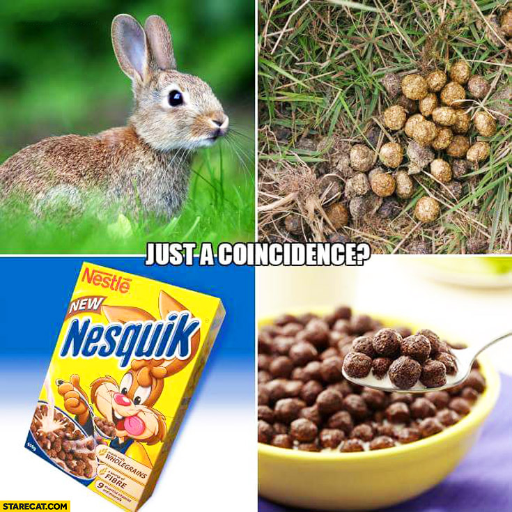 Just a coincidence? Rabbit bunny poo looking like Nesquik