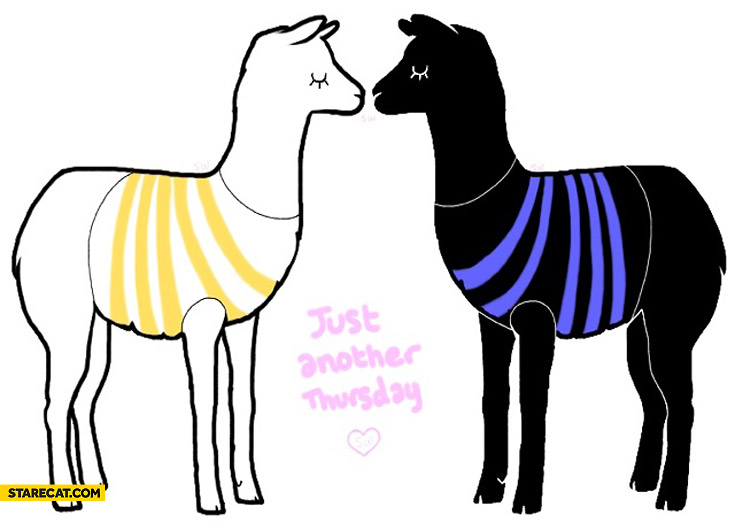 Just another thursday lamas kissing white gold blue black dress