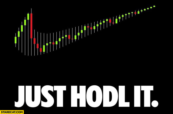 Just hodl it Nike logo hold stock market graph