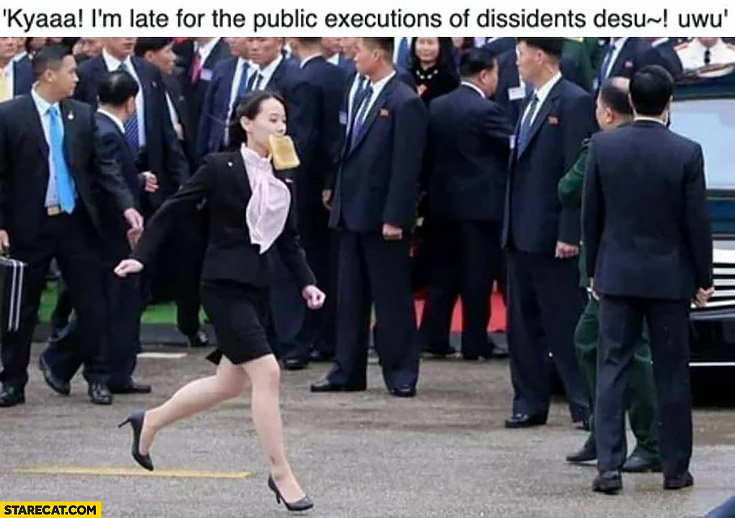 Kim jong un sister Kim Yo-Jong I'm late for the public executions of dissidents