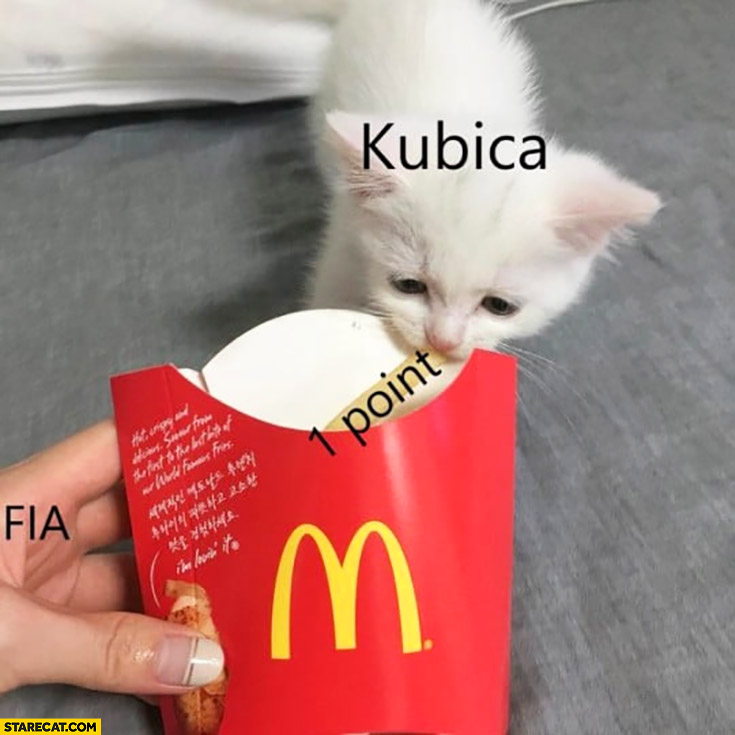 Kubica scores 1 point in F1 cute tiny cat kitten takes McDonald's french fry