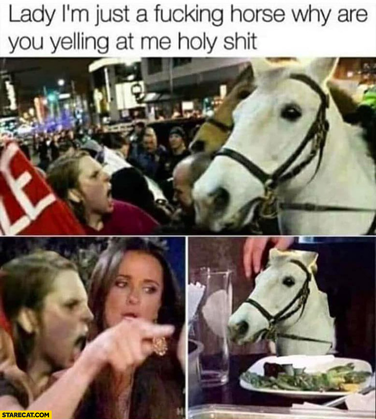 Lady I;m just a horse why are you yelling at me holy shit