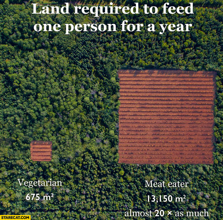 Land required to feed one person for a year vegetarian vs meat eater comparison