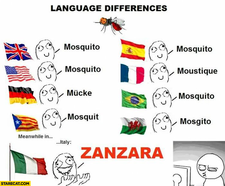 the similarities and differences of the english and spanish language Spanish and portuguese are two of the world's most spoken languages they fall  into the branch of romance languages called west iberian,.