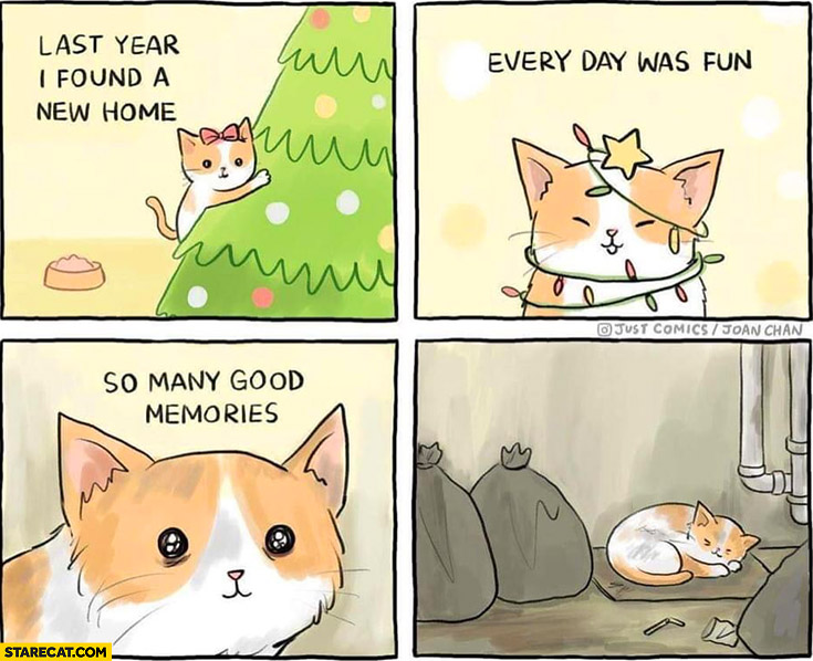 Last year I found a new home every day was fun so many memories cat as a christmas gift sad comic
