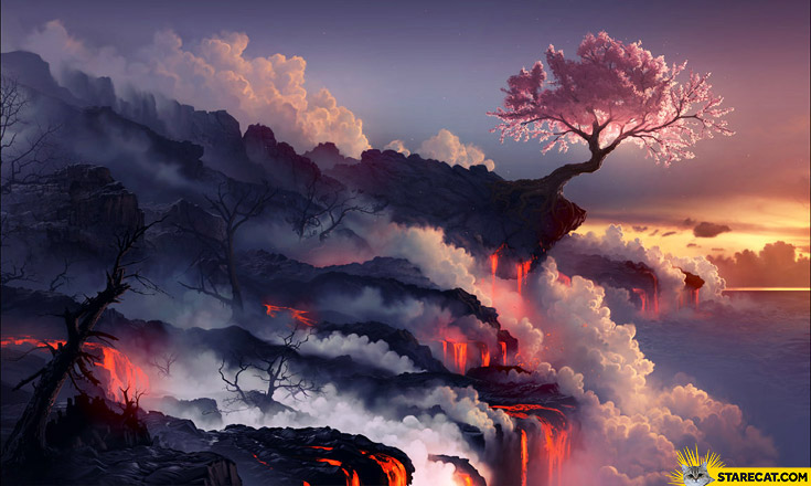 Lava lonely tree