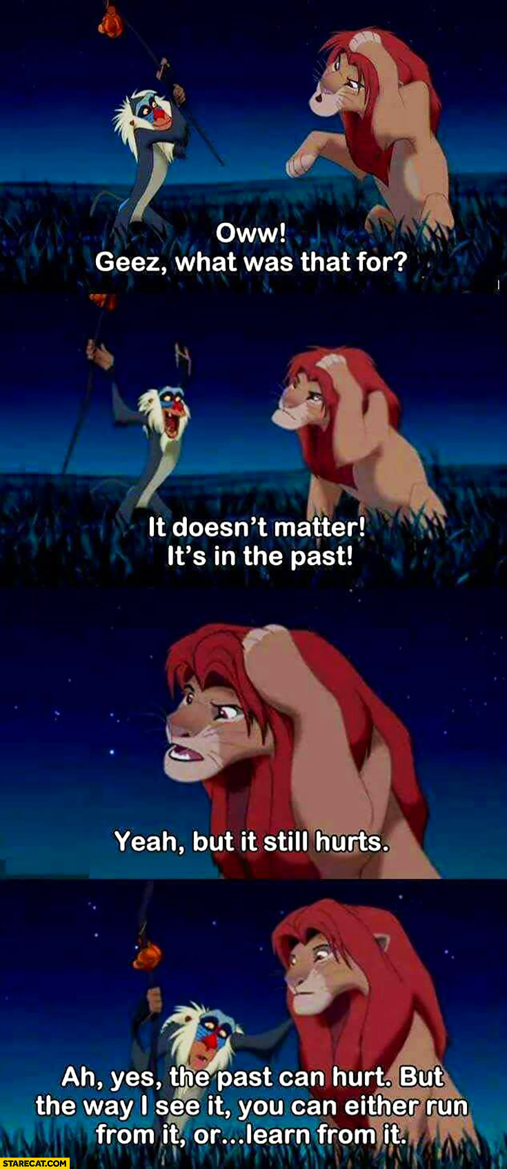 Lion King: what was that for? It doesn't matter, it's in the past. But it still hurts.Past can hurt, but the way I see it you can either run from it or learn from it