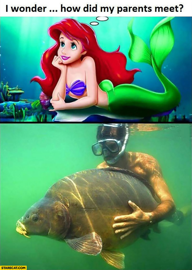Little Mermaid Ariel: I wonder how did my parents meet? Man with a giant fish