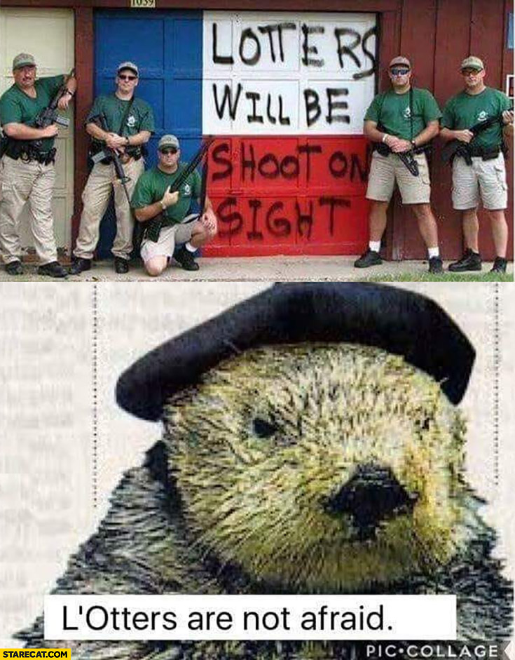 Looters will be shoot at sight, beaver: lotters are not affraid
