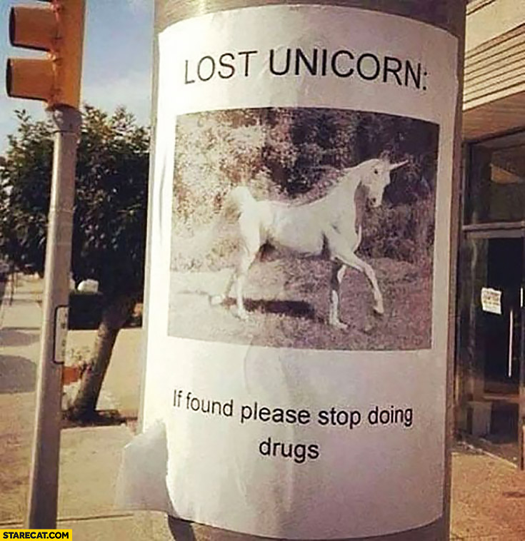 Lost unicorn, if found please stop doing drugs