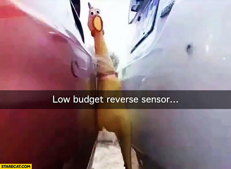 Low budget car reverse sensor rubber rooster hen toy
