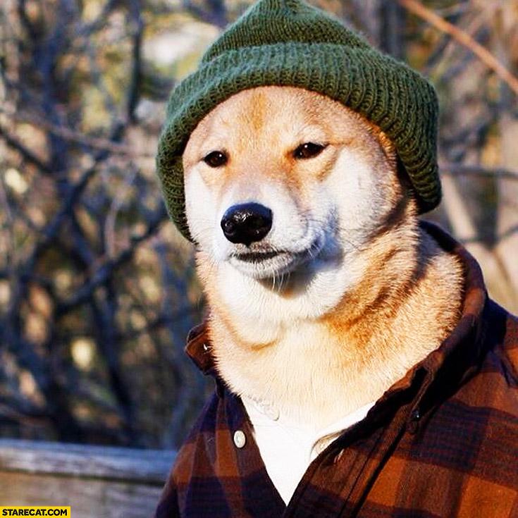 Lumber doge beanie plaid shirt