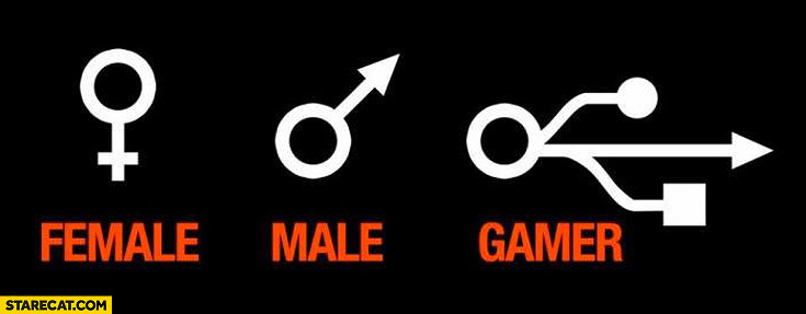 Male female gamer