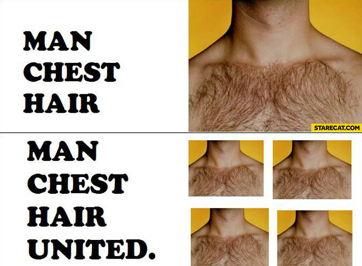 Man chest hair united