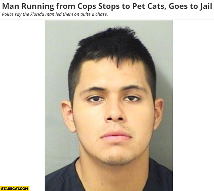 Man running from cops stops to pet cats goes to jail