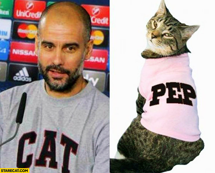 Man t-shirt cat pep