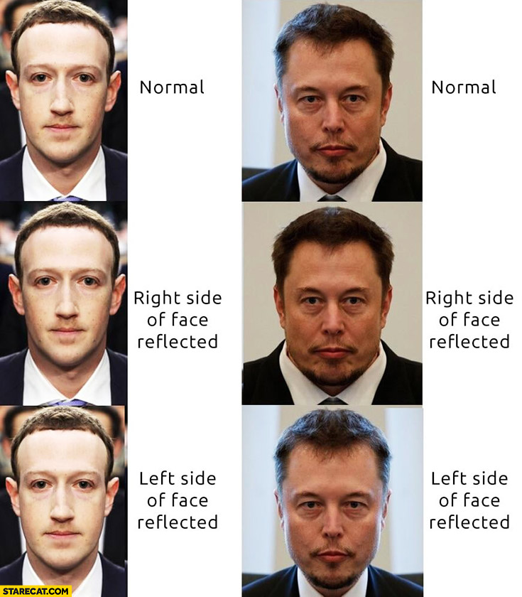Mark Zuckerberg compared to Elon Musk: normal, right, left side of face reflected
