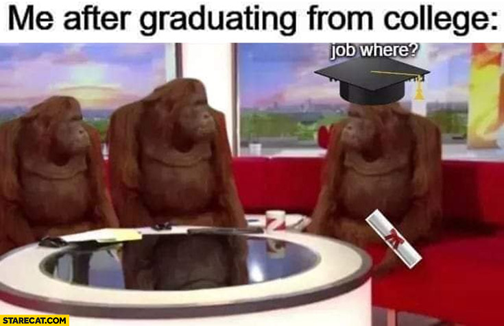 Me after graduating from college: job where? monkey
