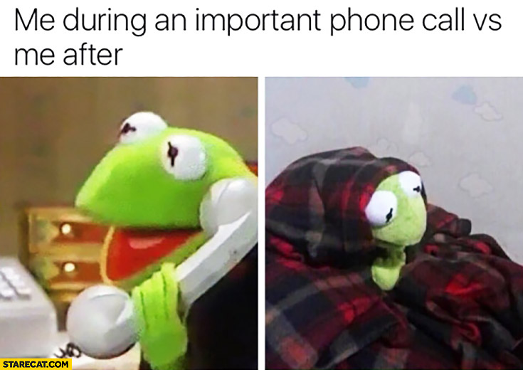 Me during an important phone call vs me after Kermit Frog