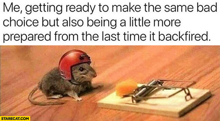 Me getting ready to make the same bad choice but also being a little more prepared from the last time it backfired. Mouse wearing a helmet mouse trap