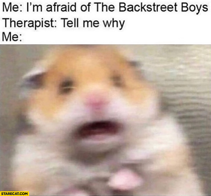 Me: I'm afraid ot The Backstreet Boys, therapist: tell me why? Me: scared hamster