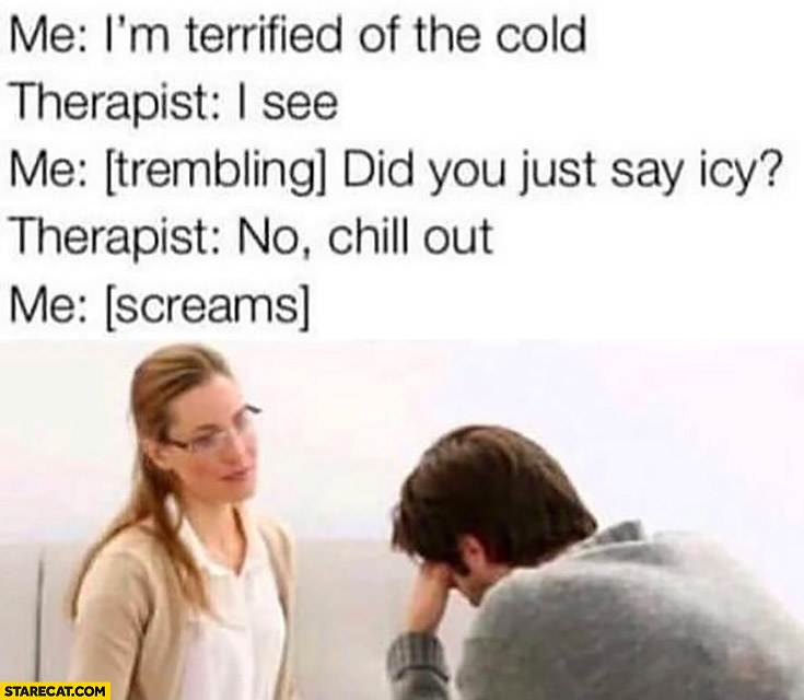 Me: I'm terrified of the cold. Therapist: I see, me: did you just say icy? Therapist no chill out me screams