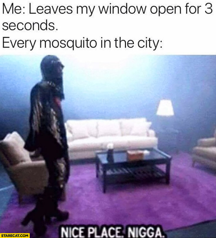 Me: leaves my window open for 3 seconds, every mosquito in the city nice place nigga