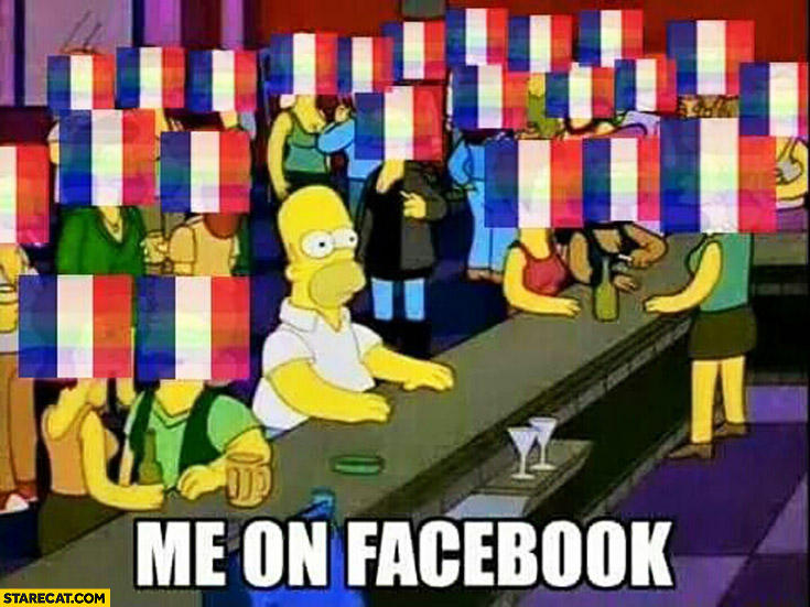 Me on facebook Homer Simpson everyone with French flag as profile picture