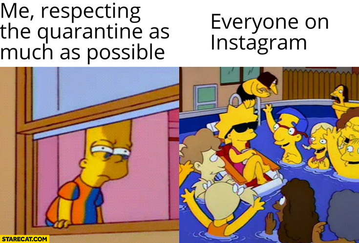 Me respecting the quarantine as much as possible vs everyone on instagram the Simpsons