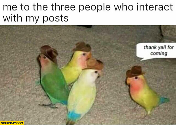 Me to the three people who interact with my posts parrots: thank yall for coming