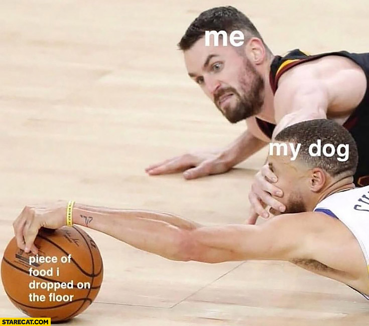 Me trying to stop my dog from eating a piece of food I dropped on the floor basketball players