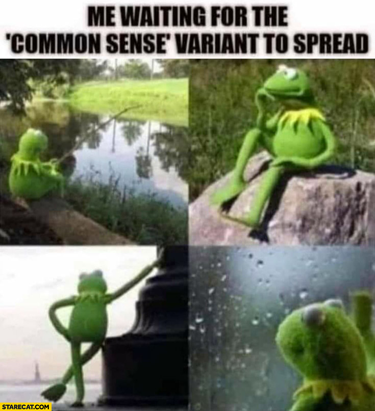 Me waiting for the common sense variant to spread Kermit the frog
