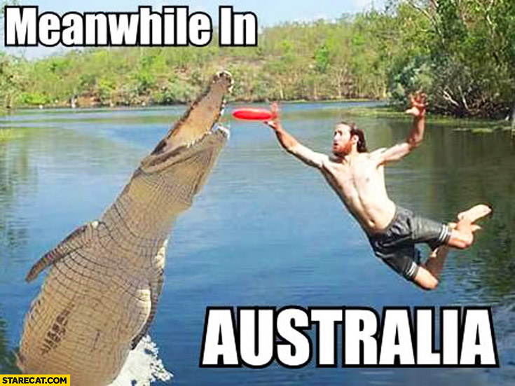 Meanwhile in Australia man boomerang crocodile action scene
